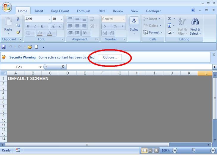 use of macro in excel 2007 pdf